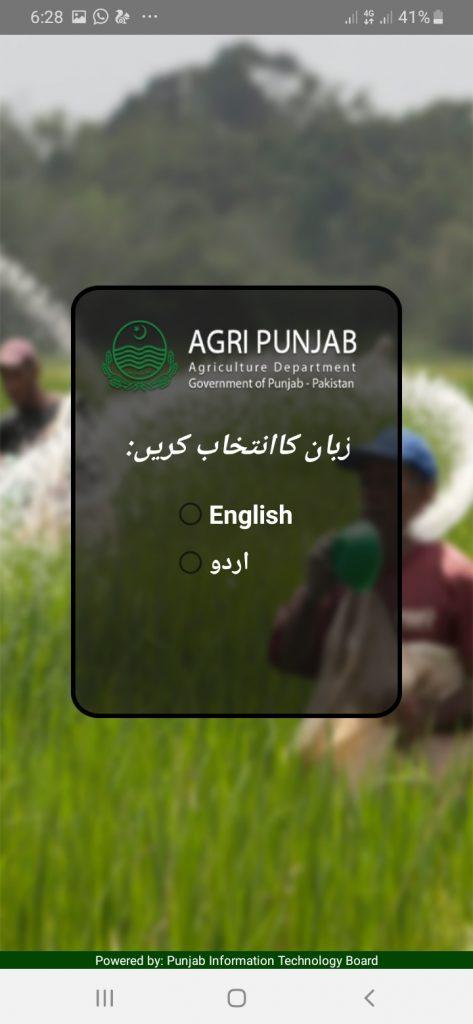 Subsidy Language
