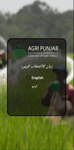 Subsidy APP Update Download 2021 – With Complete Procedure 4
